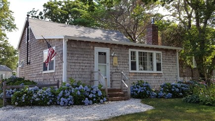 Dennis Cape Cod vacation rental - Exterior home with hydrangeas in bloom and crushed shell driveway