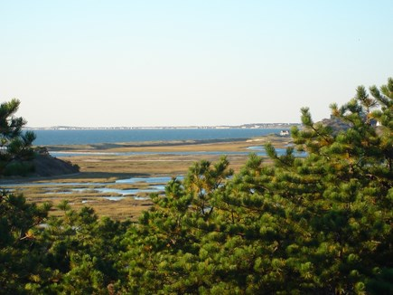 Truro Cape Cod vacation rental - Toward Pamet from nearby conservation land