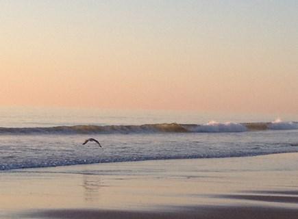 Orleans Cape Cod vacation rental - Nauset Beach on the Atlantic Ocean is 1.5 miles away