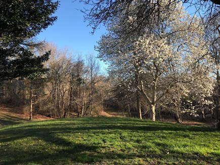 West Barnstable Cape Cod vacation rental - Private backyard abutting CC railroad and MA Audubon conservation