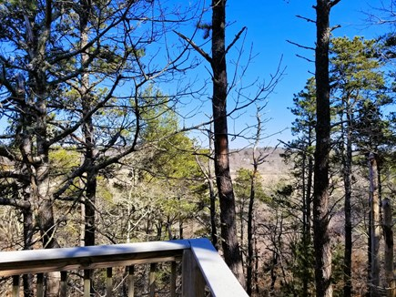 Wellfleet Cape Cod vacation rental - Wooded views with marsh beyond from deck