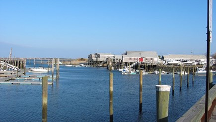 Barnstable Village Cape Cod vacation rental - Stop at Barnstable Harbor to book a whale watch or eco tour.
