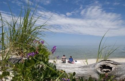 Brewster Cape Cod vacation rental - Breakwater Beach (6/10 mile away)