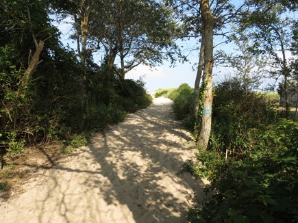 Chatham Cape Cod vacation rental - Here's your sandy path to the beach.
