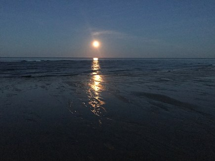 Sagamore Beach Sagamore Beach vacation rental - Moonrise—Sagamore Beach