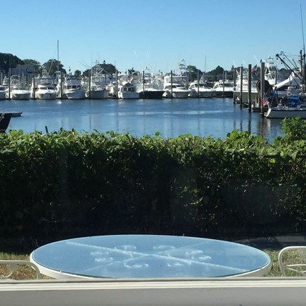 Hyannis Cape Cod vacation rental - View from living room in cottage