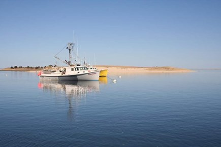 CHATHAM Cape Cod vacation rental - Fishing boats at the Chatham Fishpier, a ten minute walk.