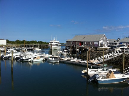 Barnstable Cape Cod vacation rental - Two short blocks to the harbor for whale watching.