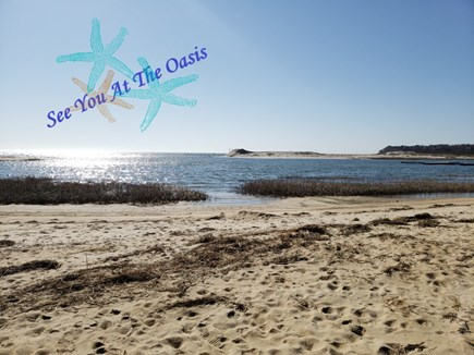 Chatham Cape Cod vacation rental - The Oasis At Starfish Lane is located directly on Little Beach.