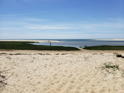 Chatham Cape Cod vacation rental - Little Beach in June