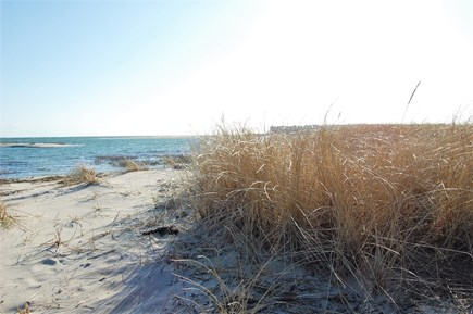 Chatham Cape Cod vacation rental - Dunes at Little Beach