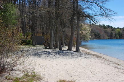 Brewster Cape Cod vacation rental - Access to Long Pond Sandy Beach