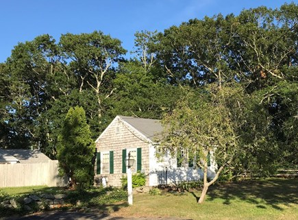 Harwich Cape Cod vacation rental - Cottage