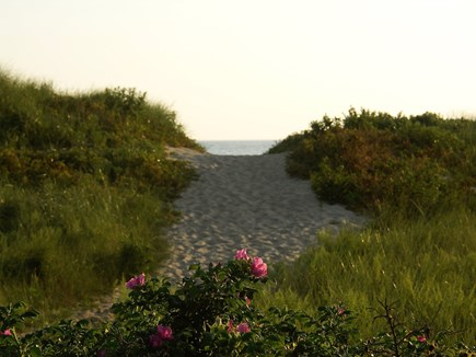 Eastham Cape Cod vacation rental - The path less followed.