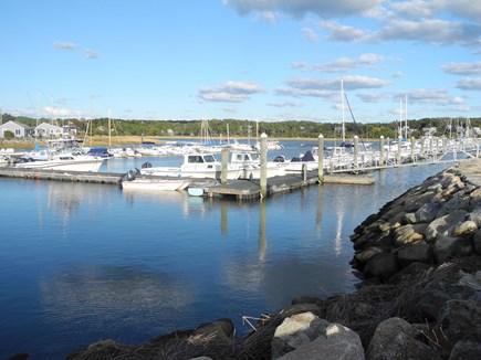 Eastham Cape Cod vacation rental - Provincetown Whale Watch
