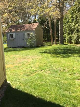 North Falmouth New Silver Beac Cape Cod vacation rental - Large back yard for the kids to run around and play.