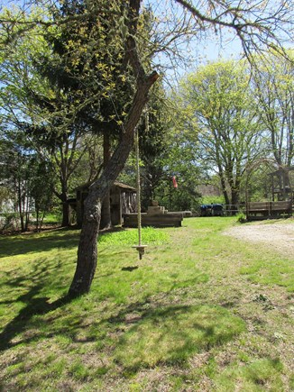 Brewster Cape Cod vacation rental - Tree Swing