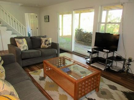 Truro Cape Cod vacation rental - Family Room TV