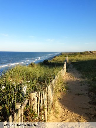 Wellfleet Cape Cod vacation rental - Beautiful LeCount Hollow Beach is just 1/2 mile away