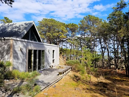 Wellfleet Cape Cod vacation rental - Plenty of privacy at this beautiful home