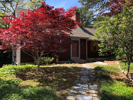 Brewster Cape Cod vacation rental - Mature landscaping