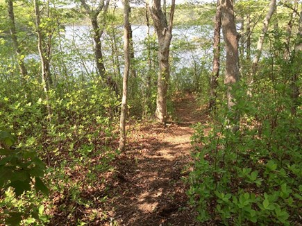 Orleans Cape Cod vacation rental - Private path to the Pond