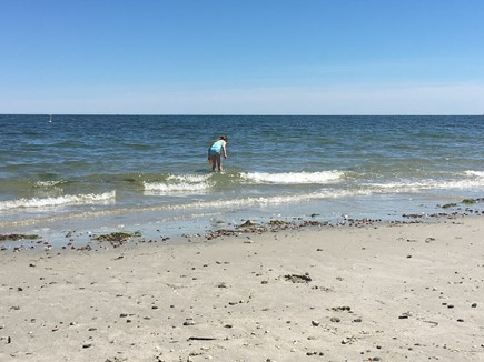 South Yarmouth Cape Cod vacation rental - Parker's River Beach a short walk from the cottage.