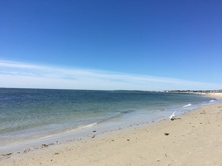 South Yarmouth Cape Cod vacation rental - Take an easy walk of 4/10 mile to beautiful Parkers River Beach!