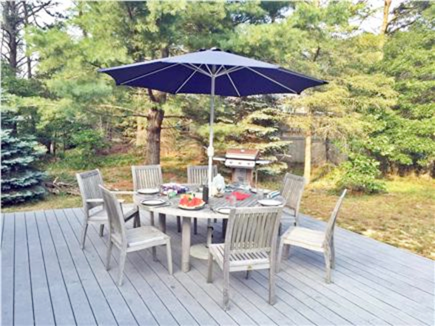 Orleans Cape Cod vacation rental - Best back yard for play and entertaining.