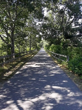 Eastham Cape Cod vacation rental - Enjoy a bike ride on nearby Cape Cod Rail Trail