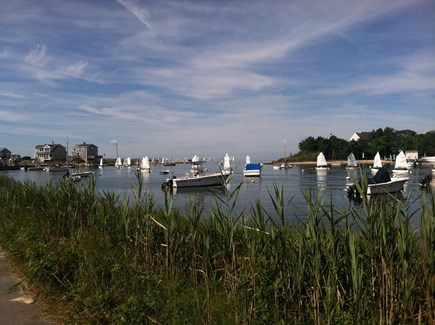 Falmouth, New Silver Beach Cape Cod vacation rental - Wild Harbor (less than one block from home)