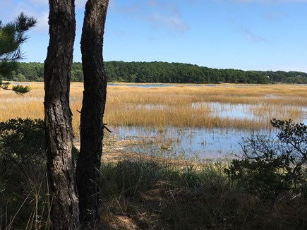 Wellfleet Cape Cod vacation rental - View from the edge of the tidal marsh at the end of the driveway
