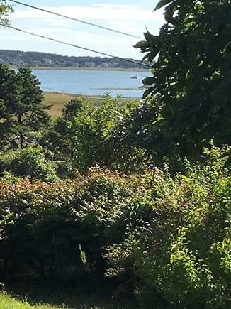 Wellfleet, Pine Point Cape Cod vacation rental - Harbor view from patio