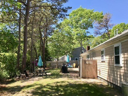 South Yarmouth Cape Cod vacation rental - Sunny back yard with outdoor shower