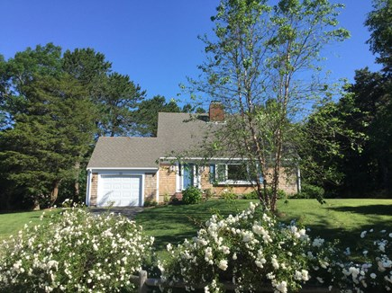 Chatham Cape Cod vacation rental - Welcome to Lucky Ducks in North Chatham!