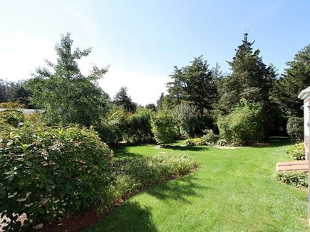 Orleans Cape Cod vacation rental - Private, lush back yard.