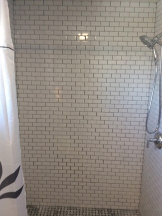 North Truro Cape Cod vacation rental - Shower
