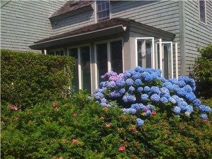 New Seabury (Mashpee) New Seabury vacation rental - Sunroom has amazing landscaping