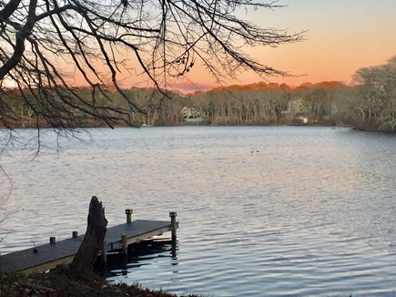 Harwich Cape Cod vacation rental - Pond just a hundred feet from cottage