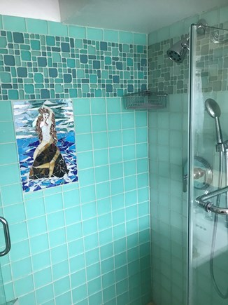 Provincetown, Bull Ring Wharf Oceanfront Cape Cod vacation rental - Bathroom 1 shower