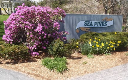 Brewster Cape Cod vacation rental - Welcome to Sea Pines