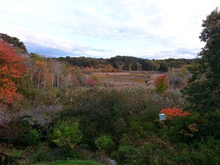 Wellfleet Cape Cod vacation rental - Autumn at Hidden Hollow