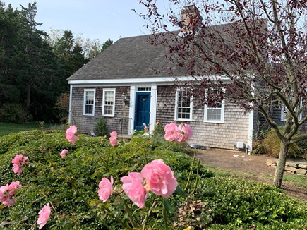 Orleans Cape Cod vacation rental - Charming East Orleans Cape