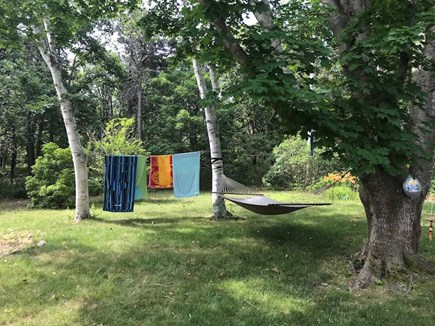 Truro Cape Cod vacation rental - A day well spent
