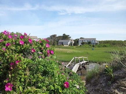 Harwich Cape Cod vacation rental - View from beach towards house