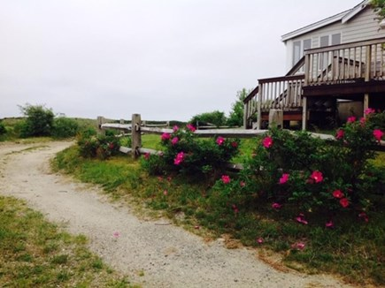 Harwich Cape Cod vacation rental - Deck and side of house
