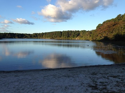 Brewster (Blueberry Pond)  Cape Cod vacation rental - Private neighborhood beach on Blueberry Pond just 10 minute walk.