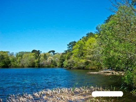 Harwich, Waterfront Quiet Cape Cod vacation rental - Summer Lake view