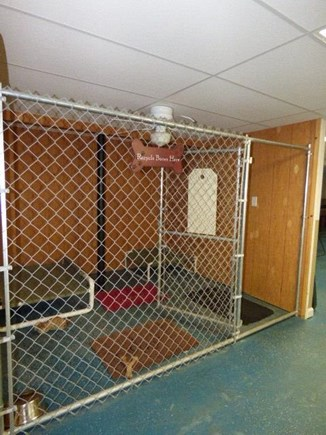 Dennis Cape Cod vacation rental - Gated dog area, walkout to back yard