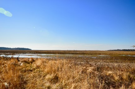 Eastham Cape Cod vacation rental - There is a path from the backyard onto the marsh for closer views